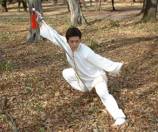 西多摩中国武術協会公式サイト